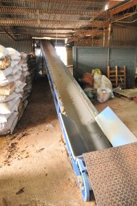 Pine Bark Conveyer